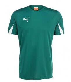 МАЙКА ИГР. PUMA TEAM SHIRT JR 701269057
